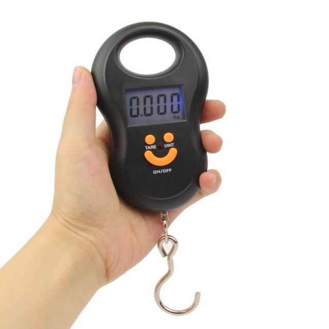 Mini Digital Fishing Scales with Backlight