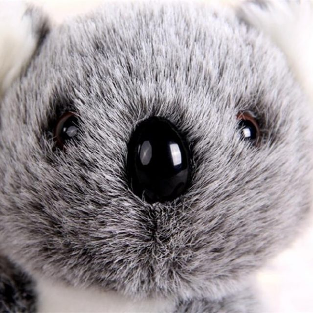 Cute Koala Plush Toy