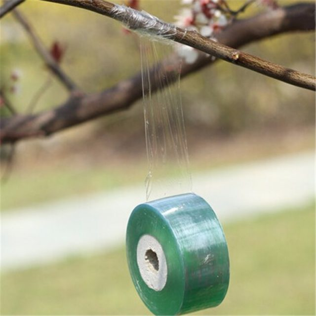 Green Polyolefin Tree Branch Tape
