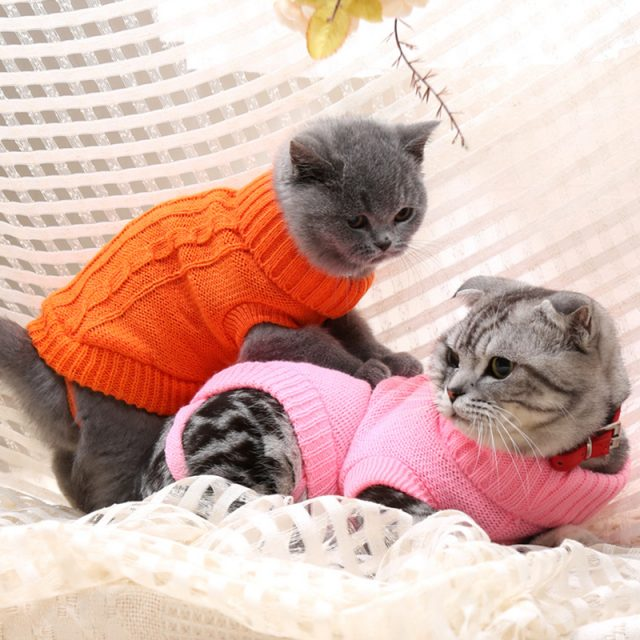Warm Turtle Neck Sweater for Pets
